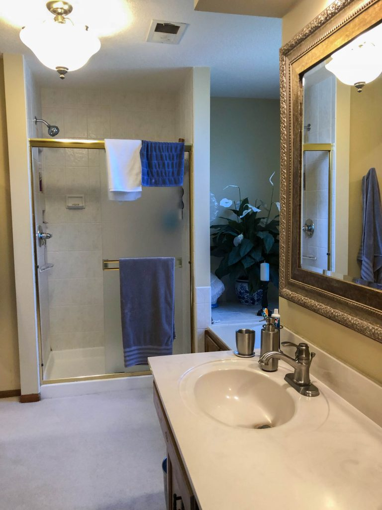 Bathroom Renovation Before – Bryan Casey Construction